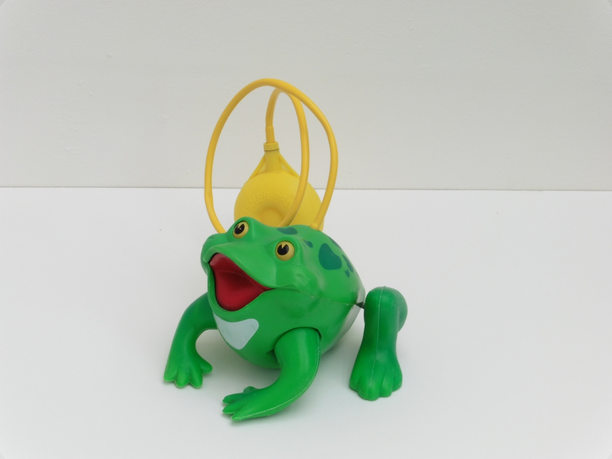 grenouille frisky frog fisher price luckyfind. Black Bedroom Furniture Sets. Home Design Ideas