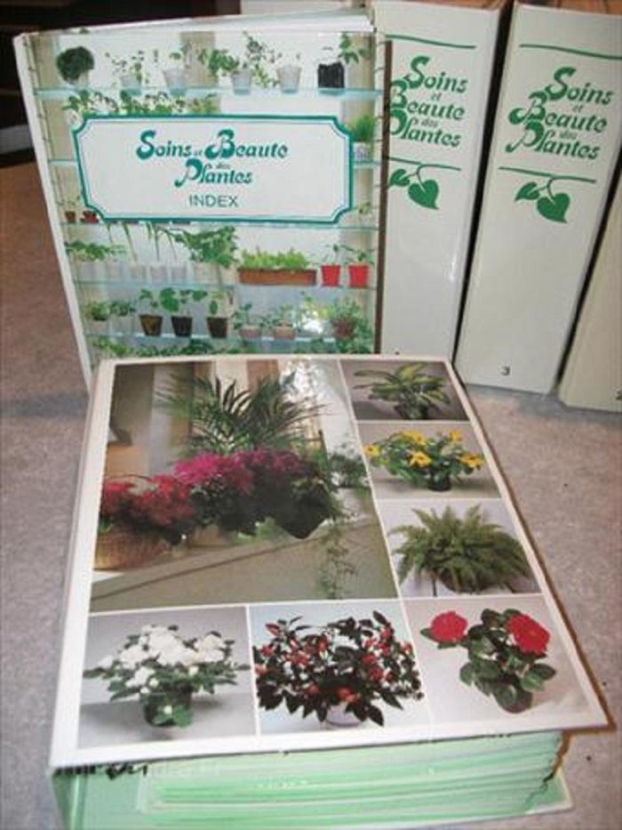6 classeurs fiches soins beaute des plantes luckyfind. Black Bedroom Furniture Sets. Home Design Ideas