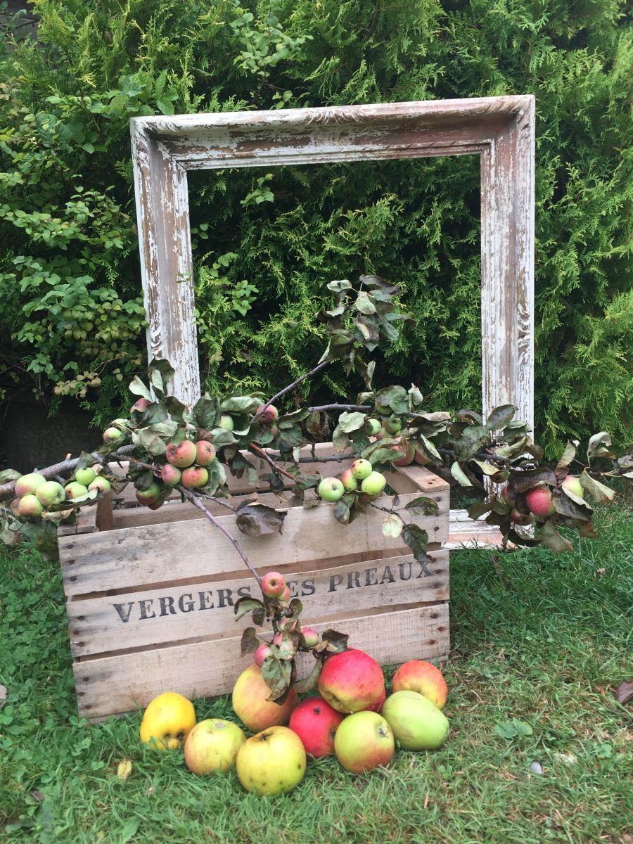 Prix Caisse A Pomme caisse de pommes - vergers des préaux
