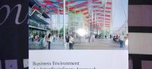 "Livre ""Business environment"""