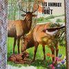 Livre enfant Les Animaux de la forêt Vintage 1970