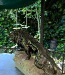 lion en plâtre plein