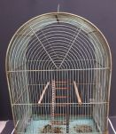 Cage oiseaux ancienne