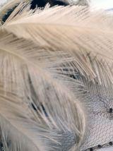 Chapeau en velours bibi à plumes d'autruche vintage 40's