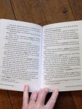 Alice Au Pays Des Merveilles - Lewis Carroll - GF Flammarion