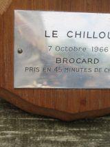 Très beau pied d'honneur de brocard du 07.10.1966. 2 pattes