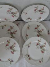 6 assiettes ancienne porcelaine de limoge