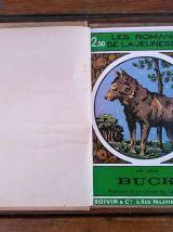 Jack london - Buck histoire d'un chien de l'Alaska