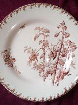 Suite de 5 assiettes plates Gien – Fuchsia