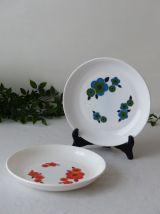 Duo d'assiettes Arcopal lotus