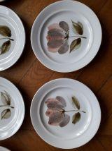 10 assiettes Saint Amand modèle CAPRI