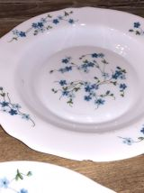 Assiettes Arcopal Myosotis Véronica Vintage