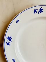 Les assiettes tons bleus