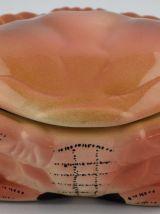 Terrine Caugant Crabe ou Tourteau