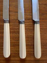 Série de 6 couteaux à dessert en bakélite Art Déco