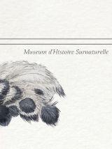 Chimère - gravure lithographie - le sajoutruche