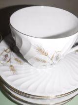 6 tasses à café ou thé avec soucoupes Bavaria