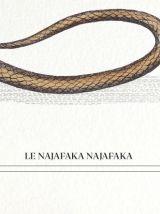 Chimère - gravure lithographie - le najafaka najafaka
