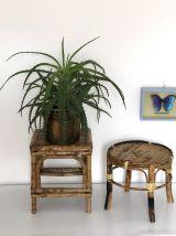 Duo portes plantes bambou
