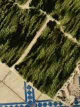 252x163cm Tapis berbere marocain