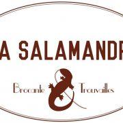 Salamandre 55