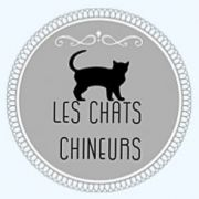 Les Chats Chineurs