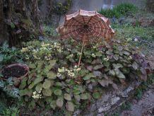 Ombrelle vintage manche bois