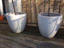 3 grands pots de fleurs en céramique blanche