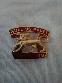 """PIN'S INSIGNE MILITAIRE """"NULLIUS PAVET OCCURSUM"""""""