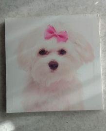 Cadre décoratif chien