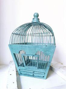 Cage d'oiseaux bleu