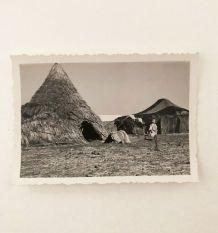 Photo vintage Maroc scène rurale années 40