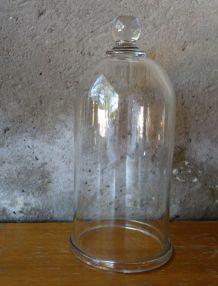 Cloche en verre pour mettre en valeur vos plantes ou objets