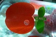 Pot à eau, broc Henkel