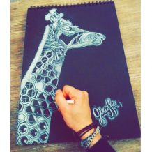 Illustration Giraffe