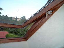 Sécurité Spéciale pour Fenêtre de toit type VELUX / Autres