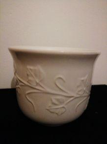 Pot blanc lierre