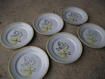 6 assiettes plates