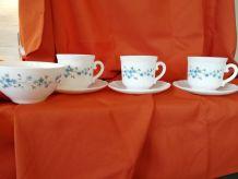 4 tasses avec soucoupes  + 1 bol  motif fleurs bleues