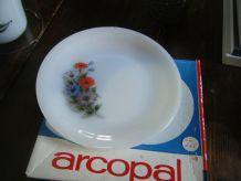 6  Assiettes à dessert Arcopal Neuves années 60
