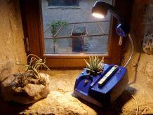 Lampe téléphone et plante verte/lampe de table/lampe à poser