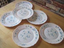6 Assiettes Arcopal plates  décor Myosotis Veronica