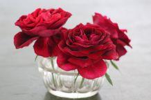 Deux pique-fleurs, art floral