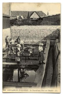 LES SABLES-D'OLONNE (85) - Le Travail aux Parc aux Huîtres
