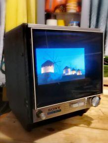 Télévision Vintage cadre numérique