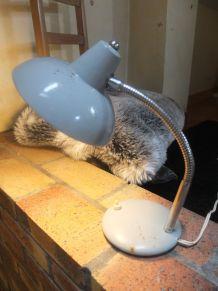 Lampe de bureau vintage style industriel 1950
