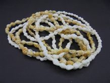 Paire de colliers de coquillages