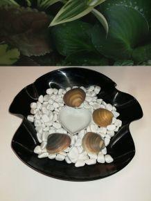 Jardin zen coquillages et coeur design disque vinyle 33 T