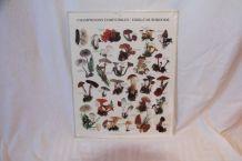 Affiche vintage cueillette des champignons