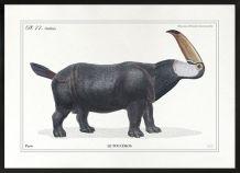 Chimère - gravure lithographie - le toucéros